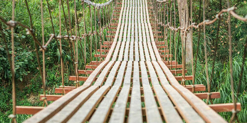 stock image of a hanging wooden bridge over foliage